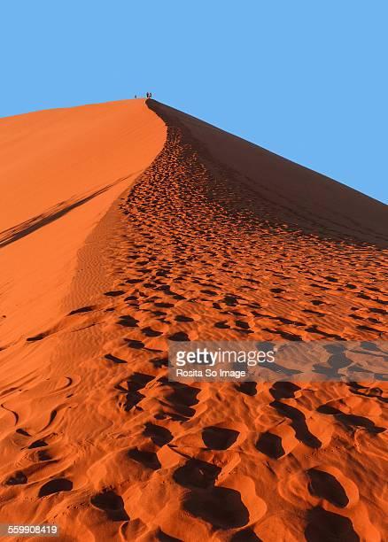 Climbing up Dune 45