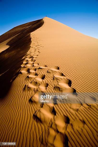 Climbing up the Sand Dune