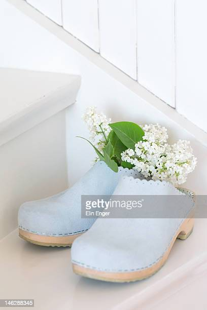 Clogs and lilacs