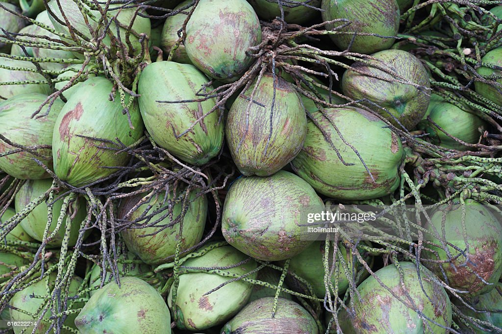 close up a group of green coconut fruit : Stock-Foto