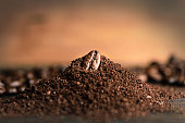 close up coffee bean on Coffee grind