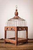 'Close up, Color Image of Vintage Bird Cage'