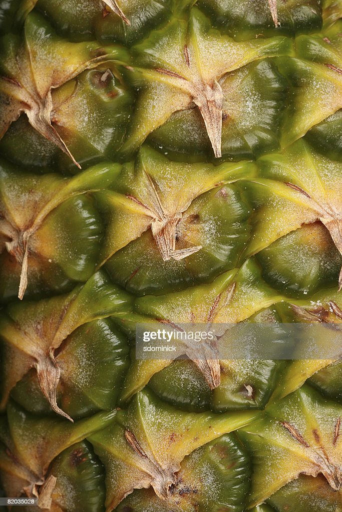 A close up image of pineapple skin. : Stock Photo