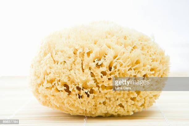 Close up of a bath sponge