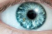 Macro Photograph Of A Blue Eye