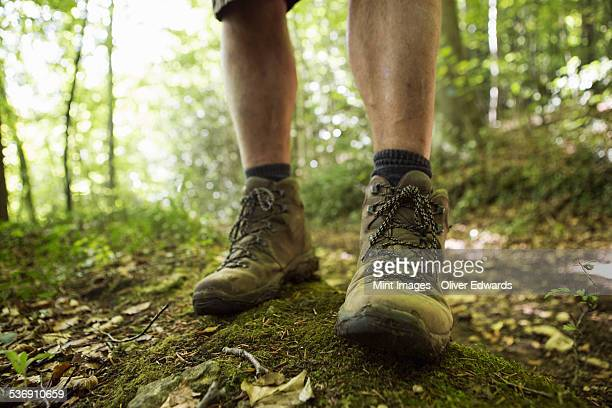 Close up of a mans feet in hiking boots on a woodland path in summer.