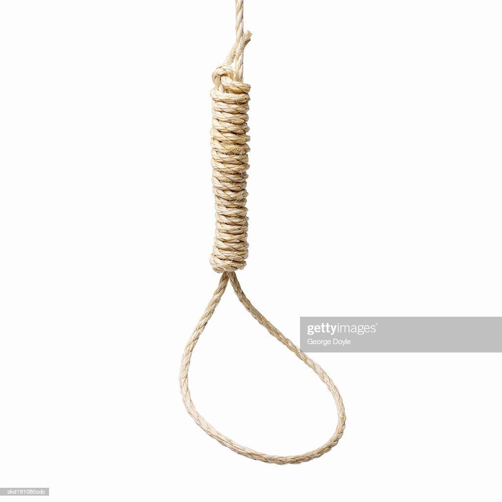 Close up of a noose