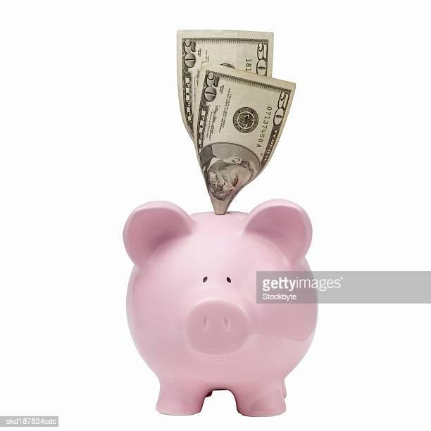 Close up of a piggybank and  50 dollar notes