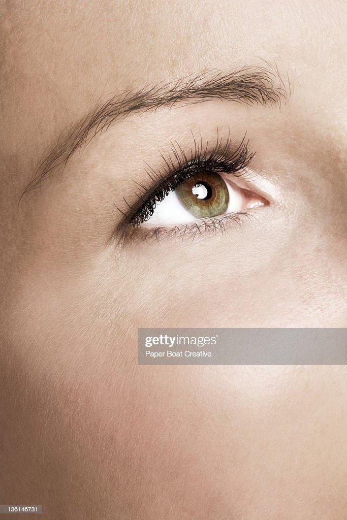 close up of a woman's eyes with false eyelashes : Stock Photo