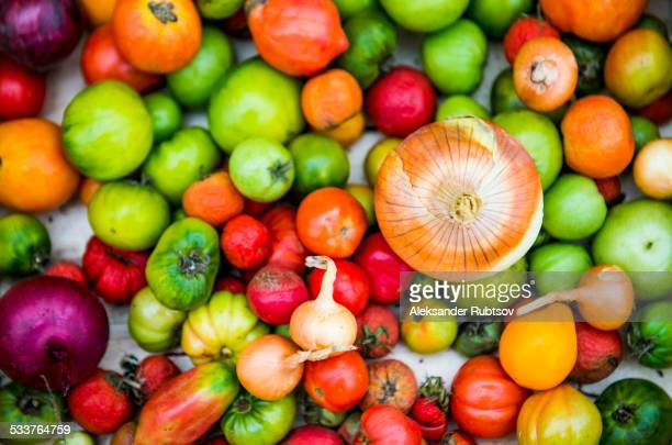 Close up of abundance of variety of produce