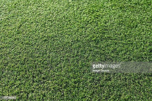 Close up of astro turf