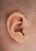 Close up of baby's ear