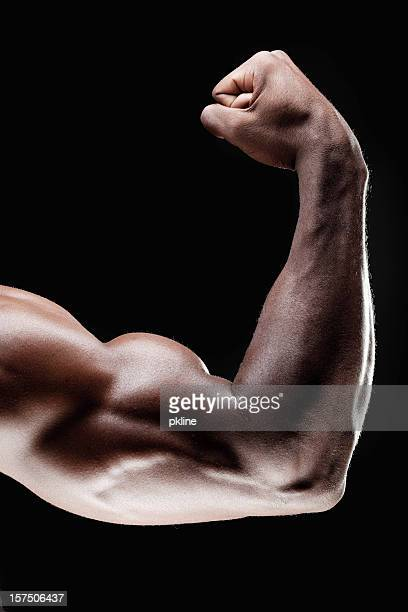 Close up of bicep