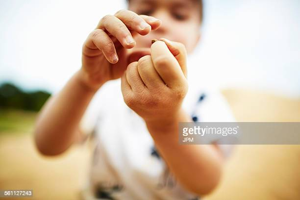 Close up of boy holding a pebble in his hands