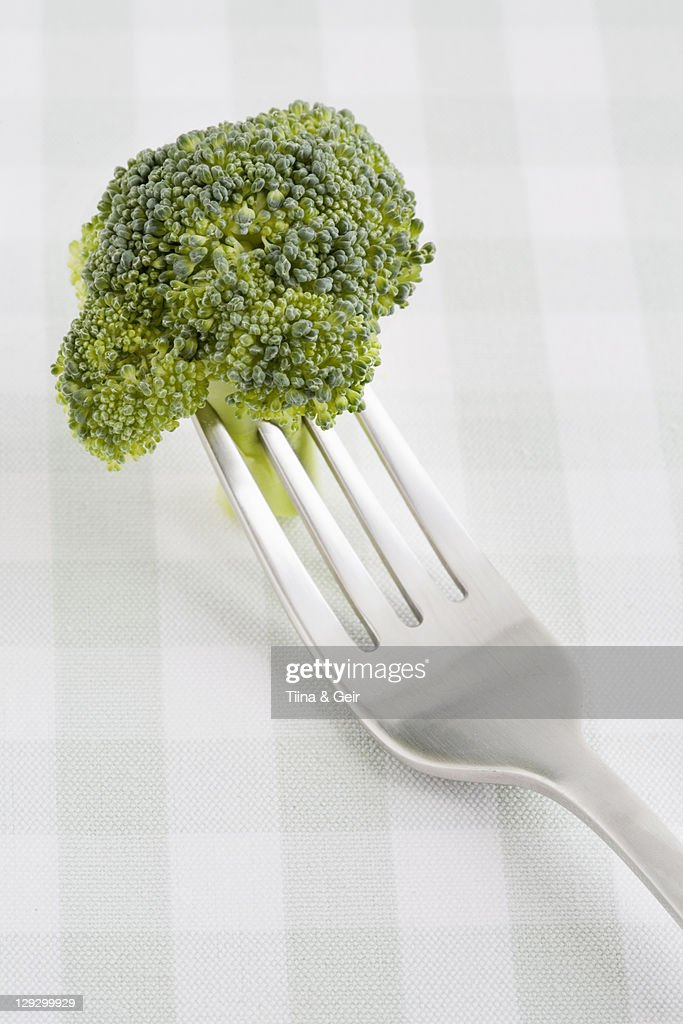 Close up of broccoli on fork : Stock Photo
