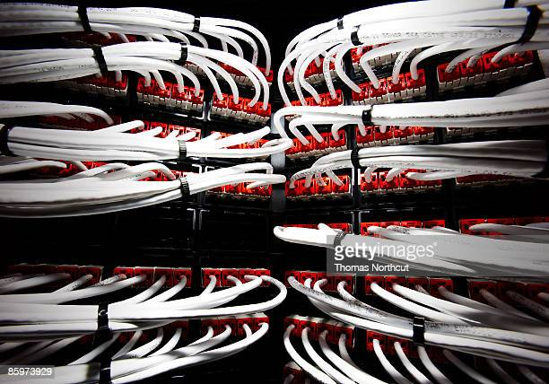 Close up of cables connected to a server.