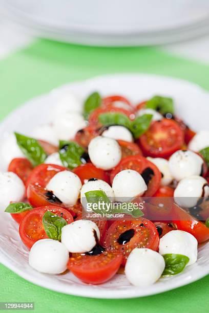 Close up of Caprese salad