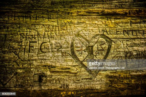 Close up of carvings on wood log
