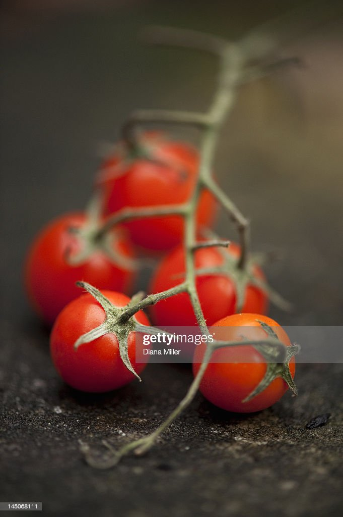 Close up of cherry tomatoes on vine