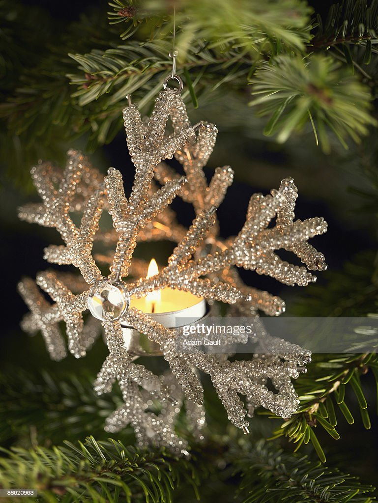 Close up of Christmas ornament on tree : Stock Photo