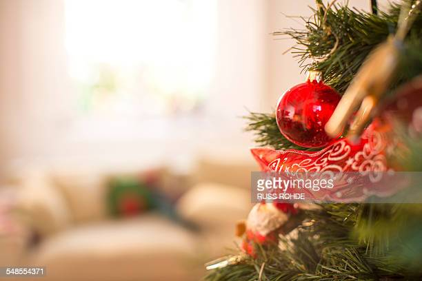Close up of christmas tree in sitting room