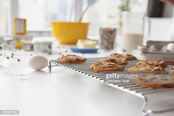 Close up of cookies on cooling tray on kitchen counter