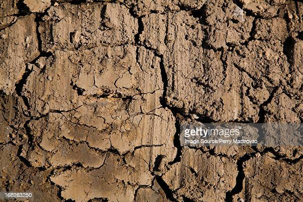 Close up of cracked dry mud