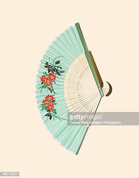 Close up of decorative fold out fan