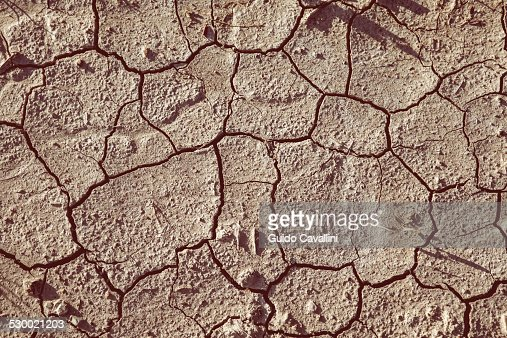 Close up of dried cracked soil