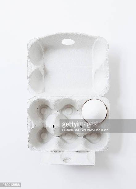 Close up of egg in carton