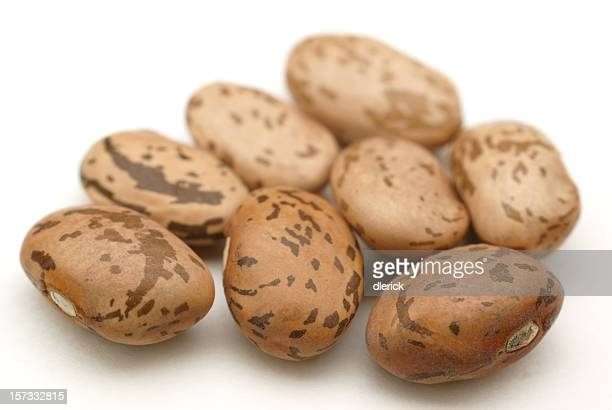 close up of eight pinto beans