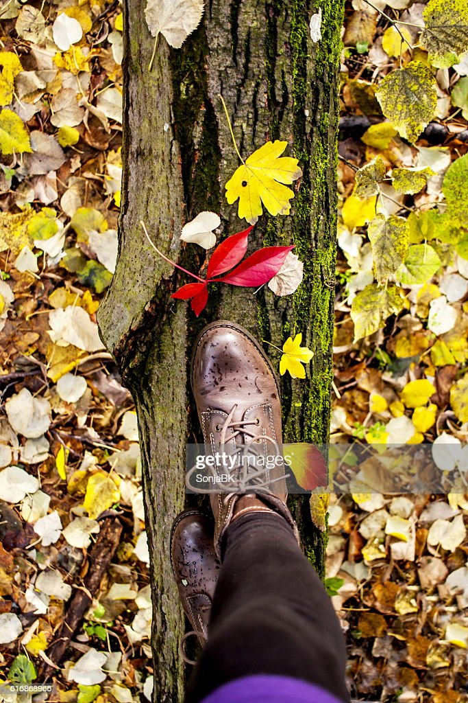 Close Up Of Feet Balancing On Tree Trunk In Forest : Stock Photo