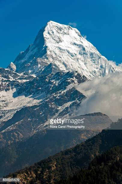 Close up of Fish Tail Mountain or Machapuchare in Annapurna Himalayas Region