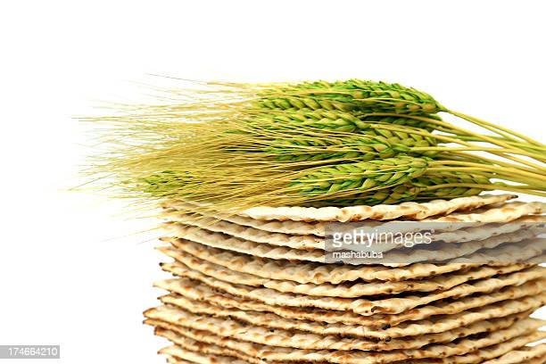 Close up of fresh wheat laying atop a pile of Matzoh