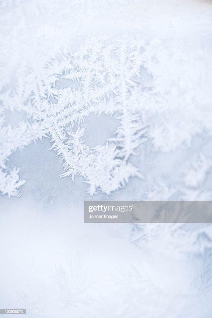 Close up of frozen window : Photo