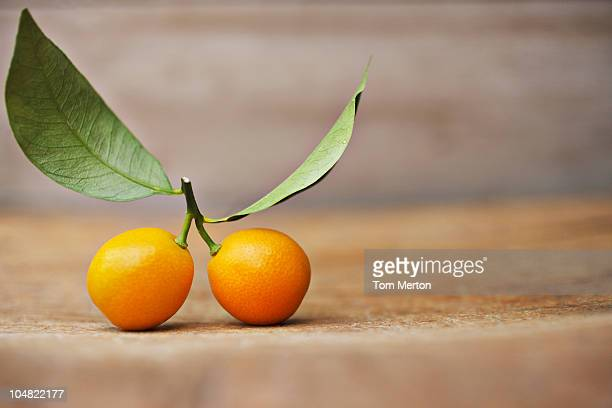 Close up of kumquats