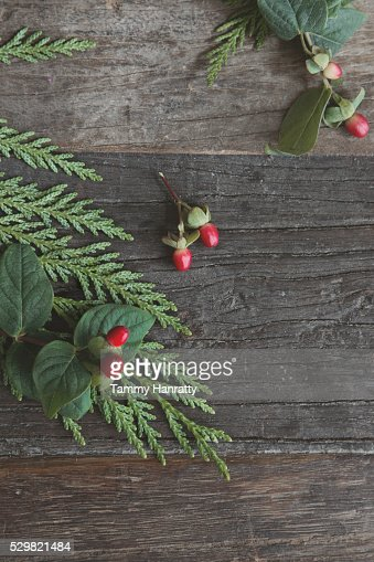 Close up of leaves and berries on wood : Stock-Foto