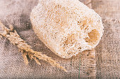 Close up of Loofah natural Body Scrub