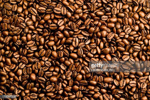 Close up of medium roasted coffee beans