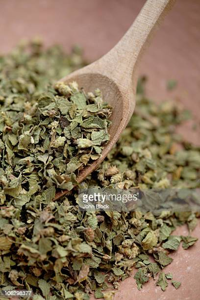 Close up of Mexican oregano and wooden spoon