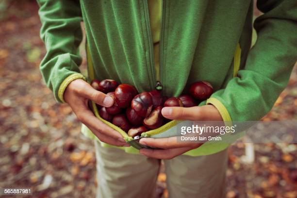 Close up of mixed race boy gathering horse chestnuts in sweater