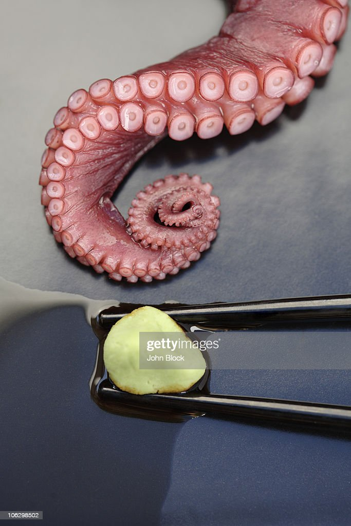 Close up of octopus and wasabi