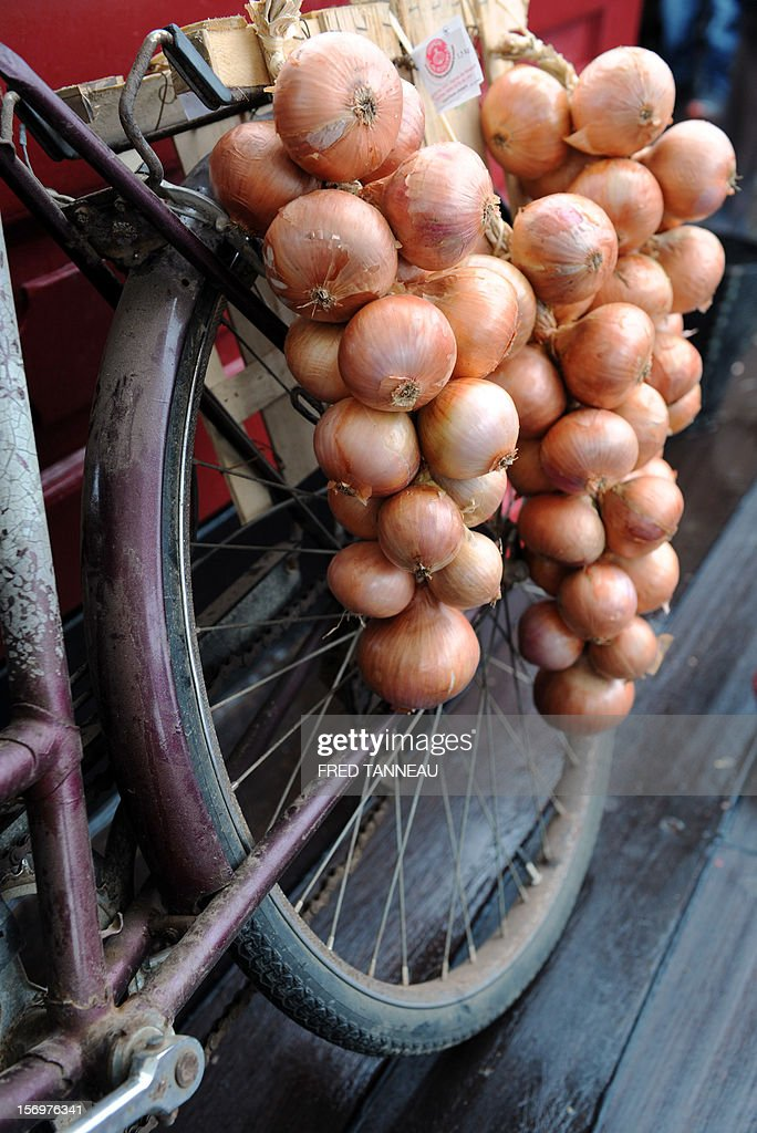 Close up of pink onions destined for Great Britain aboard the Etoile du Roy (Star of the King), a replica of an 18th-century sailing ship, on November 24, 2012 in Roscoff, western France. 'Onion Johnnies', the travelling salesmen whose berets and bicycles inspired Britain and much of the world's classic image of the archetypal Frenchman, are setting sail for England once more. The boat, weighed down by the hefty cargo, will assure the delivery of the onions to London on December 6, after stopovers on the Channel island of Jersey and at Portsmouth, on England's southern coast. The first French onion salesman to try his luck in England set sail from Roscoff in 1828.