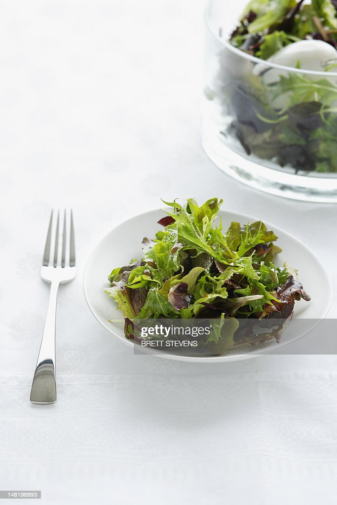 Close up of plate of green salad : Stock Photo