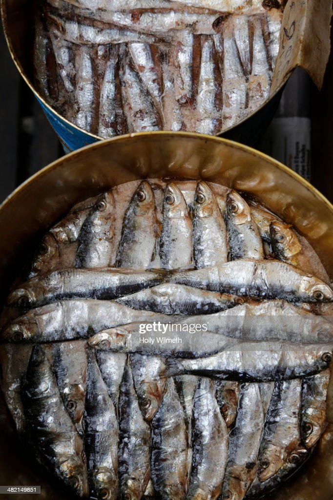 Close up of pots of sardines : Stock Photo