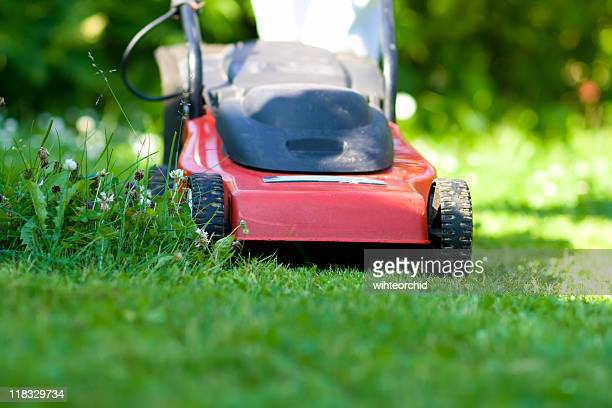 Close up of red lawn mower mowing in a garden