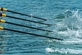 Rowing team's oars slicing through water, close-up