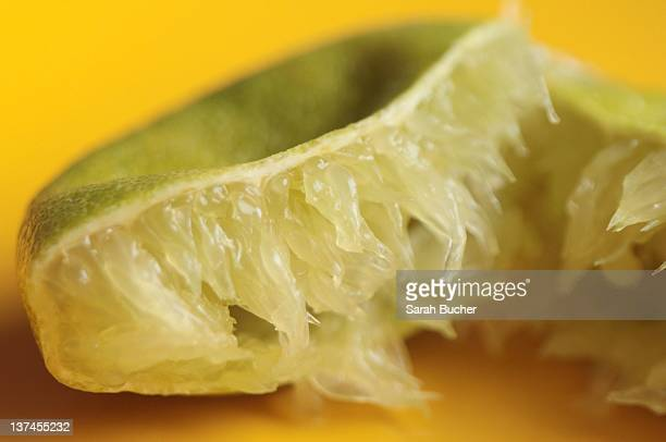 Close up of squished lime