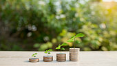 Close up of stacking coins with green bokeh background, Save money for prepare in the future.tree growing on coin, Concept Business Finance and Money grow
