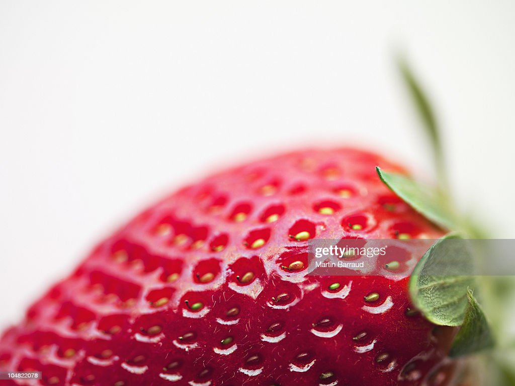 Close up of strawberry : Stock Photo
